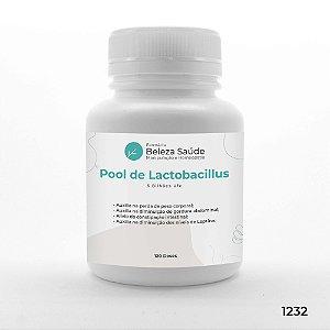 Pool De Lactobacillus Emagrecedor 6 Bilhões Ufc - 120 doses