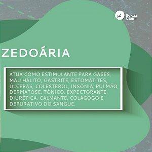 Zedoária 500mg : ( Curcuma Zedoaria ) 120 Cápsulas