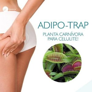 Adipo Trap 5% : Creme Redutor Celulite e Gordura - 60g