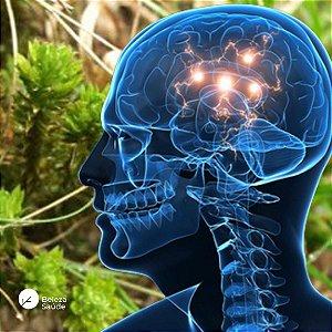 Huperzine A 200mcg : Memória, Cognição 60 Cápsulas