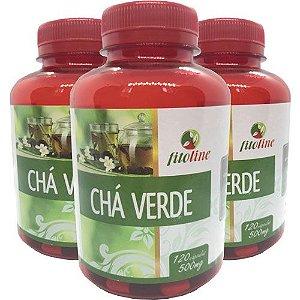 Chá Verde Concentrado 500mg 120 Cápsulas (Kit 3 unidades)