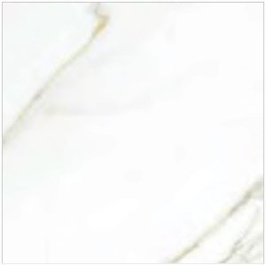 Porcelanato Portilato Mármore Super Gloss Statura White (60×60)