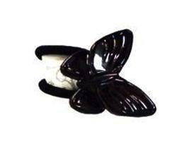 Finestra Elastico Tartaruga Borboleta F2772