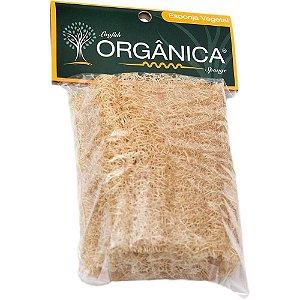 Orgânica Esponja Bucha Natural em Pedaço