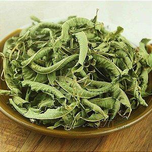 CHÁ DE VERBENA 50G (Verbena Officinalis)