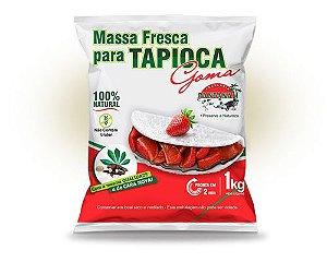 MASSA PRONTA PARA TAPIOCA 1KG - PANTANAL (GOMA)