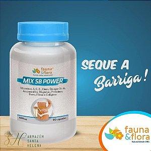 SECA BARRICA POWER COM VITAMINAS E ÔMEGAS 500MG 90 CÁPSULAS - FAUNA E FLORA