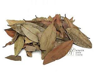 INSULINA VEGETAL 100G (Cissus Sicyoides)