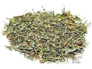CHÁ DE LOSNA 100G (Artemisia Absinthium)