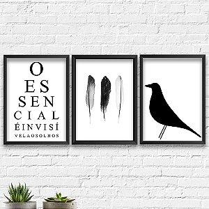 Kit Quadros Decorativos Decoração Penas Passarinho Frase