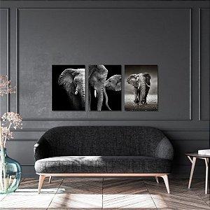 Kit Quadros Decorativos Decoração Elefantes