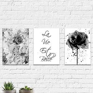 Kit Quadros Decorativos La Vie Est Belle