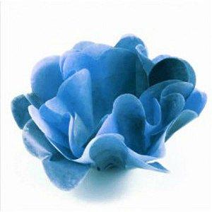 Forminha para Doces Finos - Stefani Degradê Azul - 40 unidades - MaxiFormas - Rizzo Festas