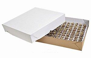 Caixa Para Transporte Branca 1 Unidade - 40x40x5cm - Rizzo Embalagens