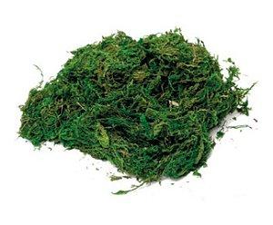 Musgo Decorativo Verde e Marrom Páscoa Rústica - Cromus Páscoa - Rizzo Embalagens