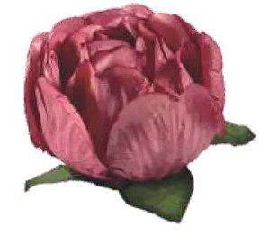 Forminha para Doces Finos - Bela Rosa Seco (2) 40 unidades - Decora Doces - Rizzo Festas