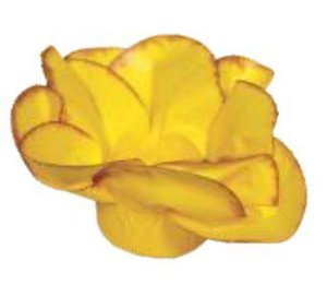 Forminha para Doces Finos - Copo de Leite Amarelo Queimado 30 unidades - Decora Doces - Rizzo Festas