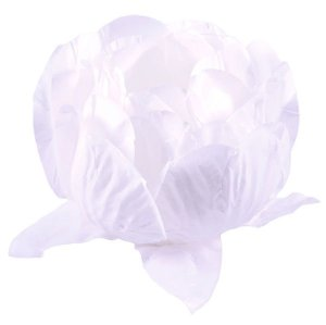 Forminha para Doces Finos - Bela Branco/Branco 40 unidades - Decora Doces - Rizzo Festas