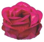 Forminha para Doces Finos - Magnólia Pink - 30 unidades - Decora Doces - Rizzo Festas