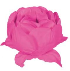 Forminha para Doces Finos - Bela Neon Rosa - 20 unidades - Decora Doces - Rizzo Festas