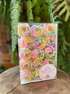 Forminha para Doces Finos - Bela Tie Dye Candy Color - 30 unidades - Decora Doces - Rizzo Festas
