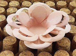 Forminha para Doces Floral Loá Colorset Rose - 40 unidades - Decorart - Rizzo Embalagens