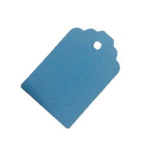 Tag Azul com Furo - 10 unidades - Rizzo Embalagens