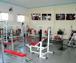 Placas Decorativas Academia Fitness