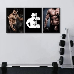 Kit 3 Quadros Academia Fitness No Pain No Gain