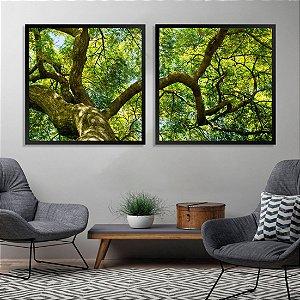 2 Quadros Grande Árvore Tronco Galhos Folhas Verde Paisagem 1,20x0,60 Moldura