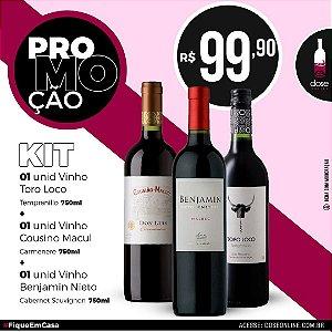 Promoção KIT Vinhos Toro Loco Templanillo 750ml + Cousino Macul Carmenere 750ml + Benjamin Nieto Cab Sauvion 750ml