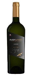 Vinho Paso De Los Andes Carmenere  750ml