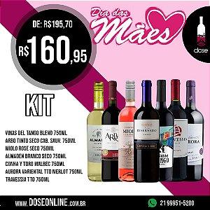 KIT 7 vinhos