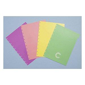 Divisórias Caderno Inteligente Pastel Médio