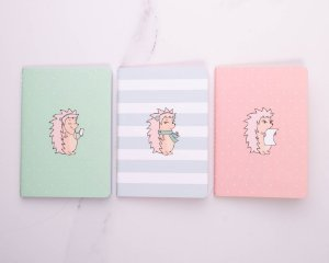 Conjunto com 3 Journals sem pauta coloridos Riccio 5994-1 Otima