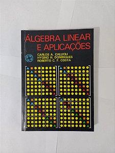 Algebra Linear e Aplicações - Carlos A. Callioli, Hygino H. Domingues e Roberto C. F. Costa