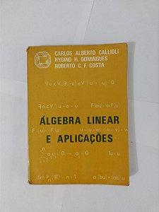 Álgebra Linear e Aplicações - Carlos Alberto Callioli, entre outros.