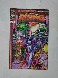 Wildstorm Rising - Jason Robinson e Barry Windsor-Smith (Leitura em Inglês)