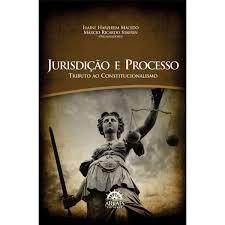 Jurisdição E Processo. Tributo Ao Constitucionalismo - Elaine Harzheim