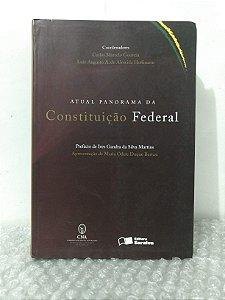 Atual Panorama da Constituição Federal - Carlos Marcelo Gouveia