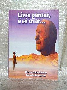 Livre Pensar, é Só Criar... - Alfredo Colenci Junior e Rosa Maria Padroni