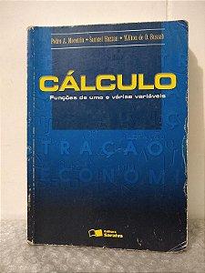 Cálculo: Funções de uma e Várias Variáveis - Pedro A. Morettin, Samuel Hazzan e Wilton de O. Bussab