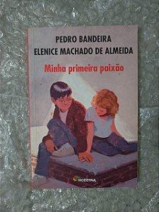 Minha Primeira Paixão - Pedro Bandeira e Elenice  Machado de Almeida