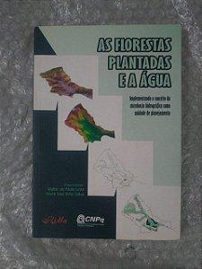 As Flores Plantadas e a Água - Walter de Paula Lima e Maria José Brito Zakia
