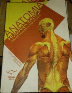 Anatomia humana básica para estudantes da área da saúde - Cristiane Regina Ruiz