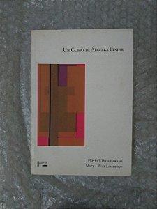 Um Curso de Álgebra Linear - Flávia Ulhoa Coelho e Mary Lilian Lourenço
