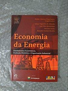Economia da Energia - Helder Queiroz Pinto Junior (Organizador)