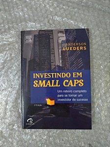 Investindo em Small Caps - Anderson Lueders