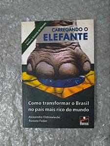 Carregando o Elefante: Como Transforma o Brasil no País Mais Rico do Mundo - Alexandre Ostrowieck e Renato Feder