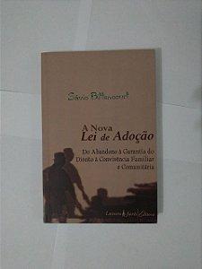 A Nova Lei de Adoção - Sávio Bittencourt